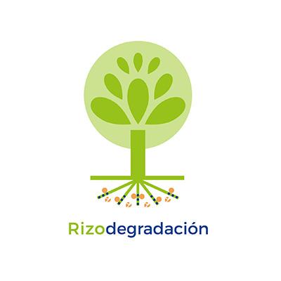 Rizodegradación